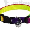 Rainbow cat collar